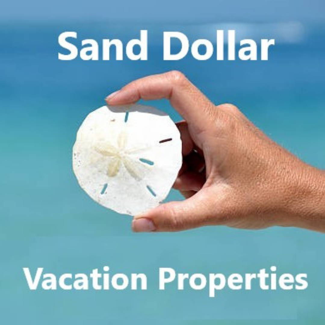 Sand Dollar Vacation Properties Logo